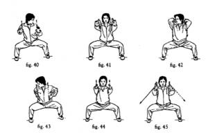 Ma Bu y ejercicios de brazo de NQ