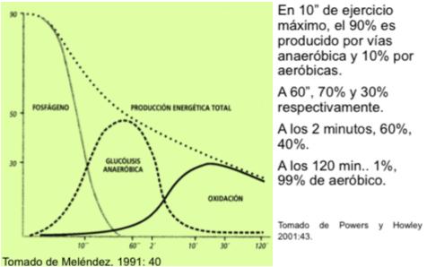 Teoría del Continuum energético.